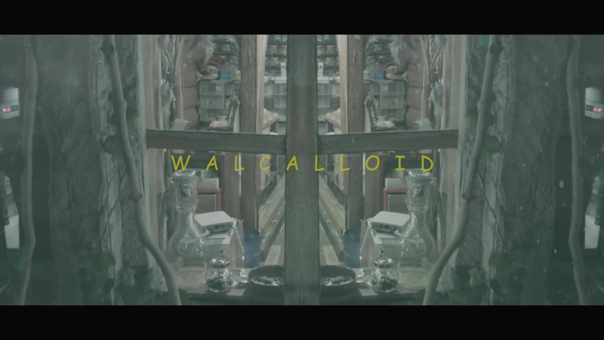 里咲りさ - WALCALLOID (Risa Satosaki - WALCALLOID).mp4_20160316_212642.203